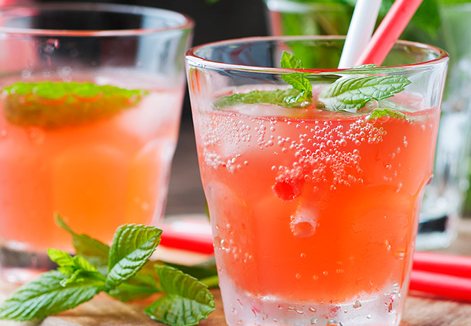 el-jardin-del-azoguejo-terraza-gin-tonic